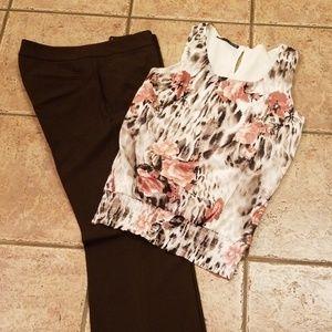 Brown Antonio Melani Dress Slacks